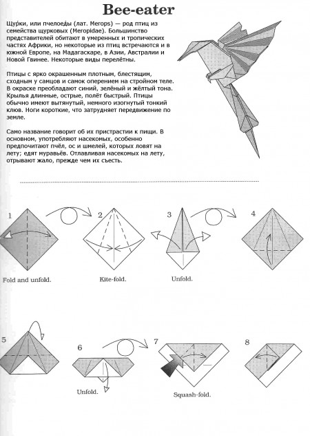 Оригами Пчелоед (Щурик)